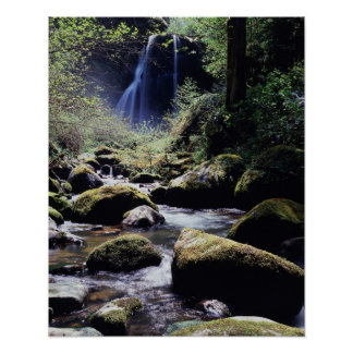 Oregon, Siskiyou National Forest, Elk Creek Poster