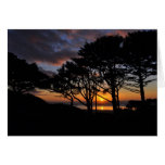 Oregon sunset greeting cards