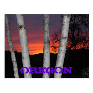 Oregon Sunset Postcard
