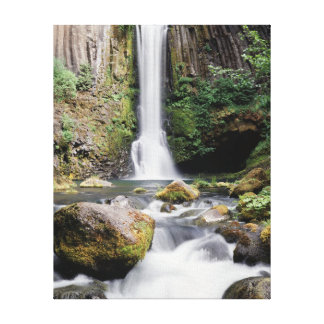 Oregon, Toketee Falls and basalt rock formations Canvas Print