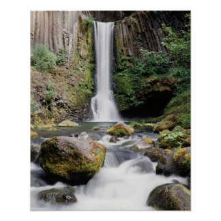 Oregon, Toketee Falls and basalt rock formations Poster