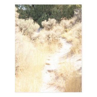 Oregon Trail Postcard