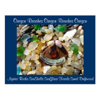 Oregon vara las ágatas Shell Seaglass de las posta