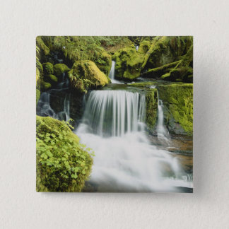 Oregon, Waterfall in Willamette national Button