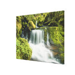 Oregon, Waterfall in Willamette national Stretched Canvas Print