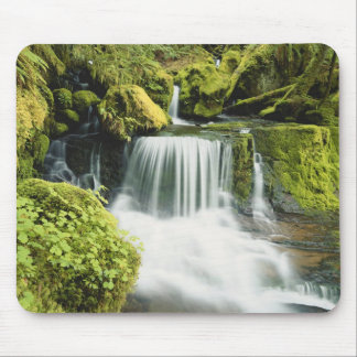 Oregon, Waterfall in Willamette national Mouse Pad
