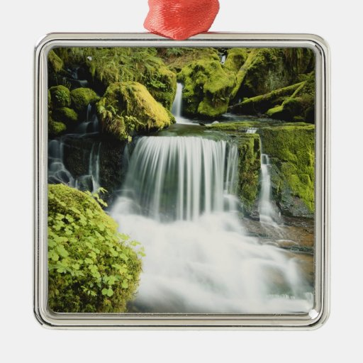 Oregon, Waterfall in Willamette national Christmas Ornaments