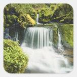 Oregon, Waterfall in Willamette national Sticker