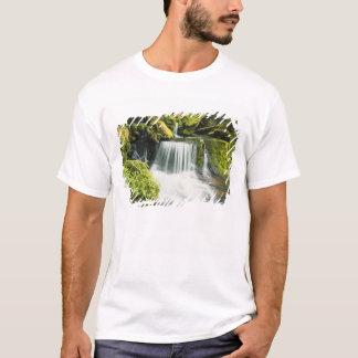 Oregon, Waterfall in Willamette national T-Shirt