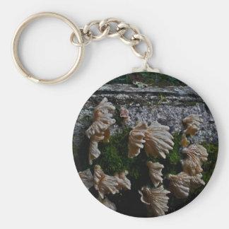 Oregon Wild Forest Mushrooms Keychain