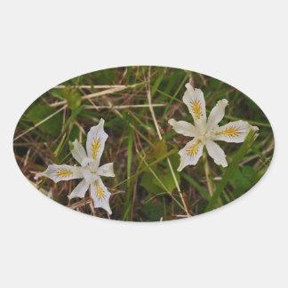 Oregon Wild Iris Oval Sticker