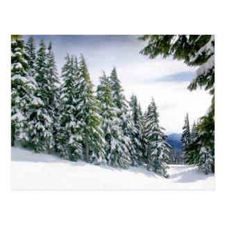Oregon Winter Postcard