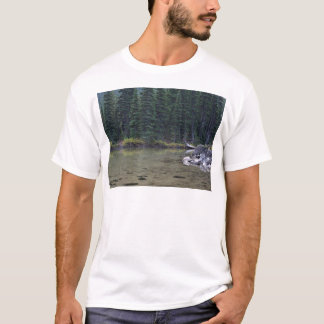 Oregons Beautiful Cascade Mountains T-Shirt