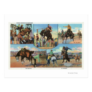 OregonScenic Views of Rodeo Bronco Busters Postcard