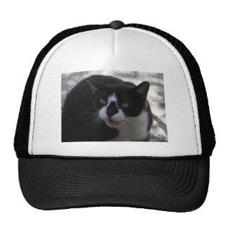 Oreo Cat Trucker Hats