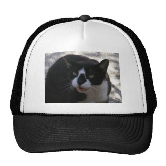 Oreo Cat Trucker Hat