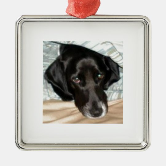 Oreo the English Springer Spaniel Dog Metal Ornament