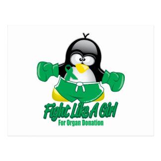 Organ Donation Fighting Penguin Postcard