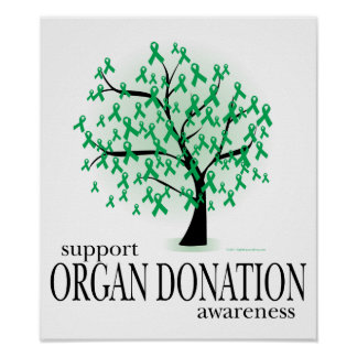 Organ Donation Tree Poster