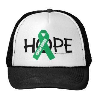 Organ Donor Hope Trucker Hat
