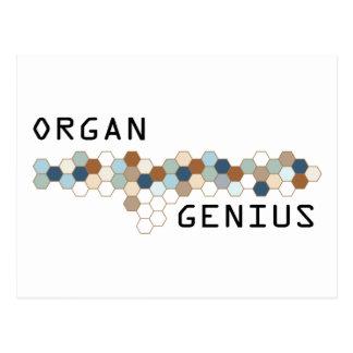Organ Genius Postcard