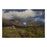 Organ Mountains After Storm Poster