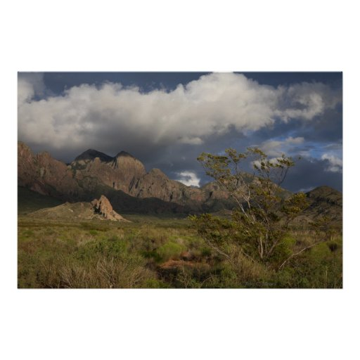 Organ Mountains After Storm Posters
