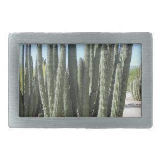Organ Pipe Cactus Rectangular Belt Buckles