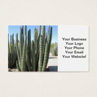 Organ Pipe Cactus Business Card