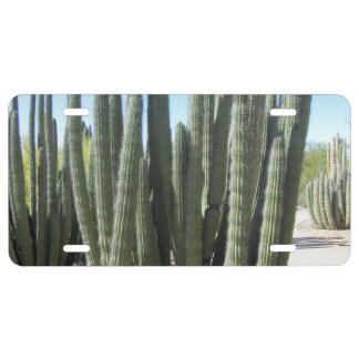 Organ Pipe Cactus License Plate