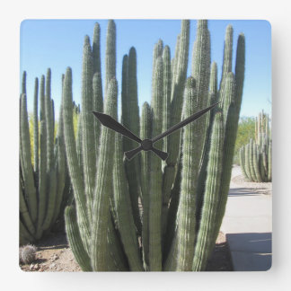 Organ Pipe Cactus Square Wall Clock