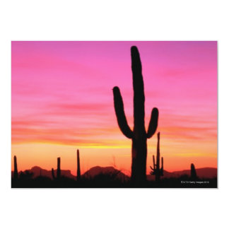 Organ Pipe National Monument Card