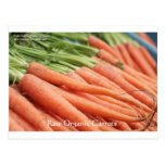 Organic Carrots Tees Mugs Cards & Other Gifts Post Card