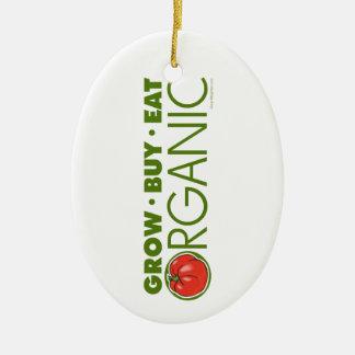 Organic Ceramic Ornament