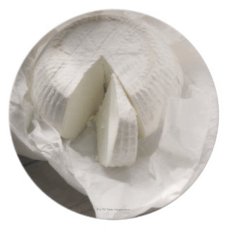organic cheese unwrapped and cut melamine plate