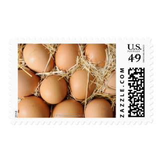 Organic eggs in straw postage