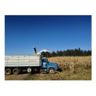 Organic Farm Harvest Post Card
