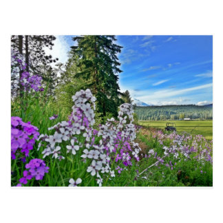 organic farming postcard