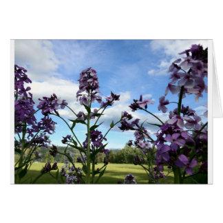 organic flowers card