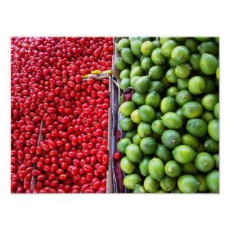 Organic Fresh Tomatoes & Lemons Kitchen Poster