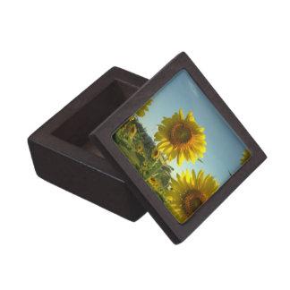Organic Gardening Premium Gift Box