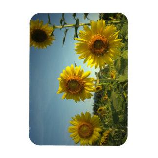 Organic Gardening Premium Magnet