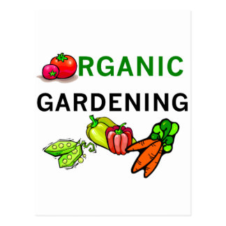 Organic Gardening T-shirts and Gifts Postcard