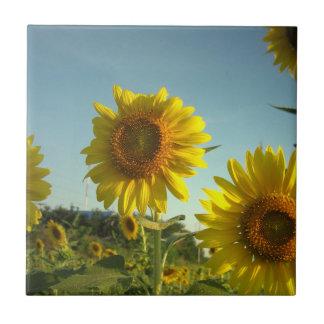 Organic Gardening Tile