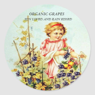 ORGANIC GRAPES, SUN LOVED AND R... CLASSIC ROUND STICKER