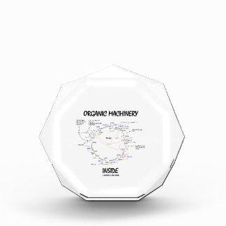 Organic Machinery Inside (Krebs Cycle) Award