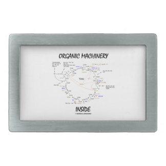 Organic Machinery Inside (Krebs Cycle) Belt Buckle