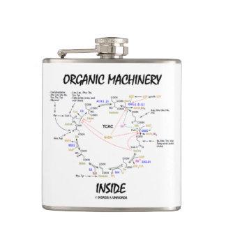 Organic Machinery Inside (Krebs Cycle) Flasks