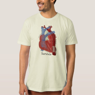 Organic men's cotton tee & Heart Art by Kevin Shea