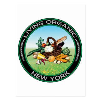 Organic New York Postcard